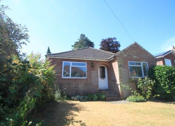 Thumbnail 4 bed bungalow to rent in Acland Avenue, Colchester, Essex
