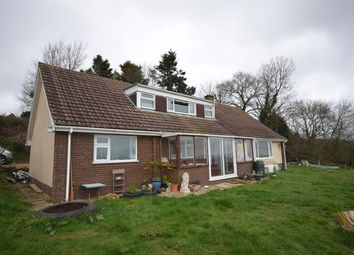 Thumbnail 4 bed bungalow for sale in Whitestone, Exeter