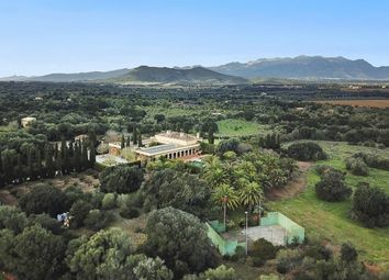 Thumbnail 12 bed finca for sale in Spain, Mallorca, Llubí