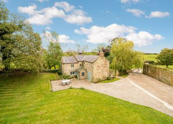 Thumbnail 4 bed detached house for sale in Grewelthorpe, Ripon