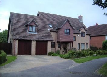 Thumbnail 5 bed detached house to rent in Lavenham Drive, Biddenham