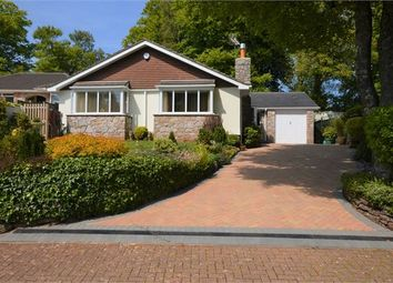 Thumbnail 3 bed detached bungalow for sale in Seymour Drive, Watcombe Park, Torquay, Devon.
