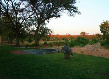 Thumbnail Farm for sale in Hoedspruit Office Park, Main Road, Hoedspruit, 1380, South Africa