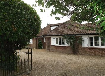 Thumbnail 4 bed property to rent in Horning Road, Hoveton, Norwich