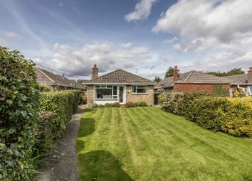 Thumbnail 3 bed detached bungalow for sale in Southleigh Road, Emsworth