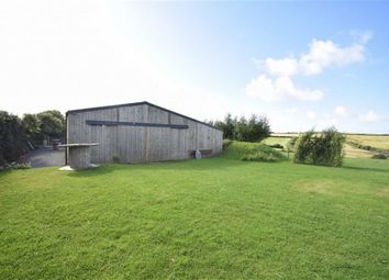 Thumbnail Property to rent in Dizzard, Bude