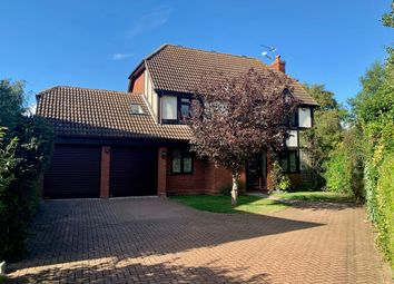 Thumbnail 5 bed detached house to rent in Hawthorn Road, Hatfield Peverel, Chelmsford