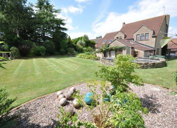Thumbnail 4 bed detached house for sale in High Street, Buckland Dinham, Frome