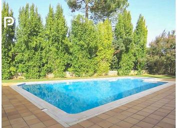 Thumbnail 6 bed villa for sale in Sesimbra, Lisbon, Portugal