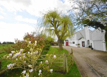 Thumbnail 4 bed detached house for sale in Barling Road, Barling Magna, Essex