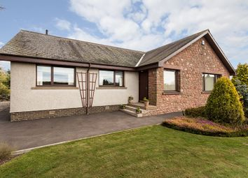 Thumbnail 4 bed bungalow for sale in Whig Street, Kirkbuddo, Dundee, Angus