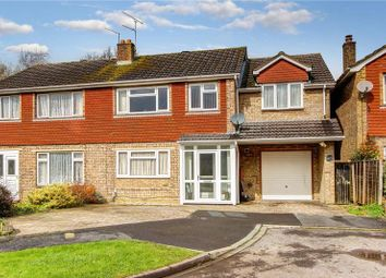 4 bed semi-detached house for sale in Halterworth, Romsey, Hampshire SO51
