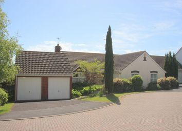 Thumbnail 3 bedroom detached bungalow for sale in Albion Close, Seaton