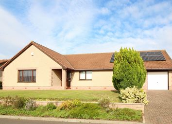 Thumbnail 3 bed bungalow for sale in Gillsland, Eyemouth