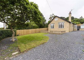 4 bed detached house for sale in Bayswater Road, Sketty, Swansea SA2