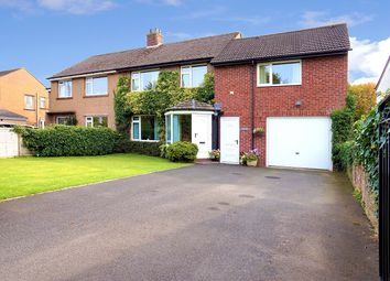 Thumbnail 4 bed semi-detached house for sale in Park Road, Carlisle