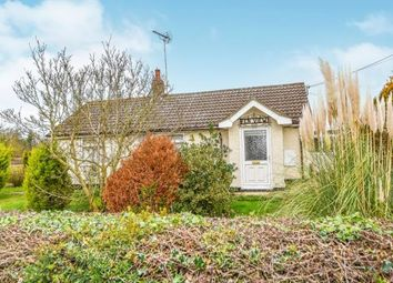 Thumbnail 2 bed equestrian property for sale in Hilgay, Downham Market, Norfolk