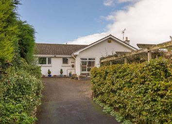Thumbnail 3 bed detached bungalow for sale in Balnagowan, North Berwick