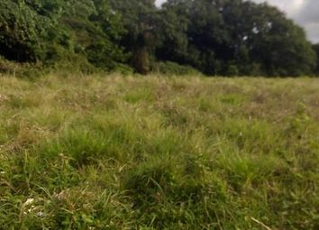 Thumbnail Land for sale in Port Maria, St Mary, Jamaica