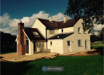 Thumbnail 4 bed detached house to rent in Dummer, Dummer