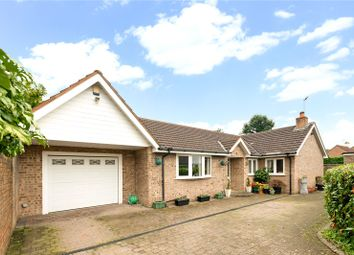 Thumbnail 3 bed detached bungalow for sale in North Drive, High Legh, Knutsford, Cheshire