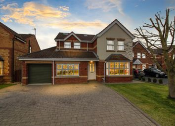 Thumbnail 6 bed detached house for sale in Tadman Close, Beverley