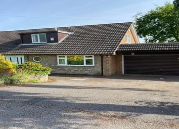 Thumbnail 3 bed bungalow to rent in Chestnut Avenue, Nottingham