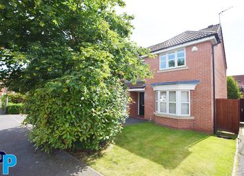 Thumbnail 4 bed detached house to rent in Nettleton Close, Littleover, Derby