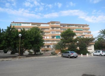Thumbnail 1 bed apartment for sale in La Mata, La Mata, Spain