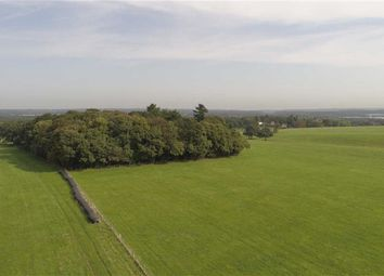 Thumbnail Farm for sale in Haslemere Road, Brook, Surrey