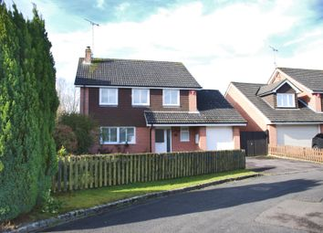 Thumbnail 3 bed detached house to rent in Brockenhurst, Hampshire