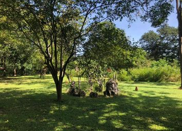 Thumbnail 5 bedroom property for sale in Copal, Guanacaste, Costa Rica