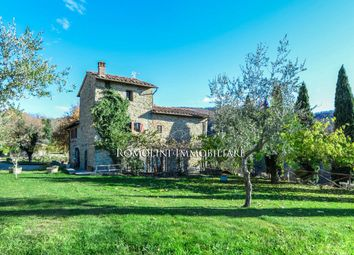 Thumbnail Farm for sale in Firenze, Tuscany, Italy