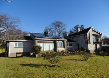 Thumbnail Hotel/guest house for sale in Arbroath, Angus