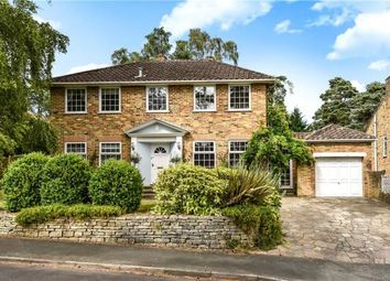 Thumbnail 4 bed detached house for sale in Winding Wood Drive, Camberley, Surrey