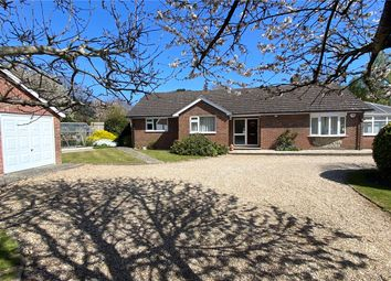 Thumbnail 3 bed bungalow for sale in Whyke Road, Chichester, West Sussex