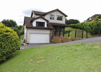 Thumbnail 4 bed detached house for sale in Woodland Park, Ynystawe, Swansea