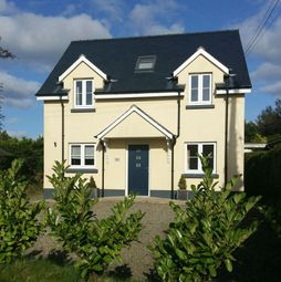 Thumbnail 4 bed detached house for sale in Beulah, Newcastle Emlyn