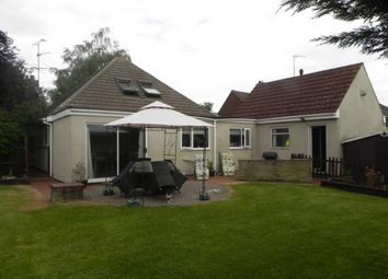 Thumbnail 4 bed bungalow for sale in Corby Road, Weldon, Corby, Northamptonshire