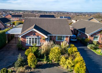Thumbnail 3 bed detached bungalow for sale in Halesworth Close, Walton, Chesterfield