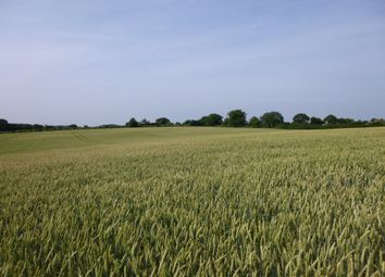 Thumbnail Land for sale in Beccles Road, Hales, Norwich