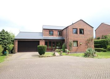Thumbnail 4 bed detached house for sale in The Orchard, Great Corby, Carlisle, Cumbria