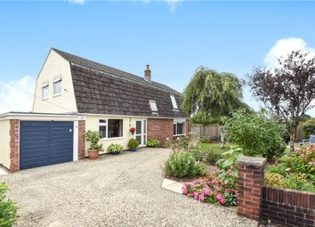 Thumbnail 3 bed detached bungalow for sale in Homefield, Shaftesbury, Dorset