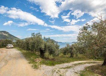Thumbnail Land for sale in Achilleio, Pteleos, Greece