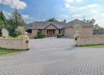 Thumbnail 4 bed bungalow for sale in Baston, Peterborough