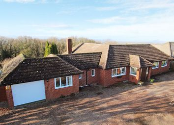 Thumbnail 4 bed bungalow for sale in Kingsthorne, Hereford