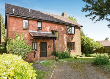 Thumbnail 4 bed detached house for sale in Denham Close, Winchester