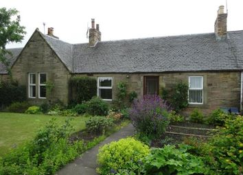 Thumbnail 2 bed terraced bungalow to rent in Beech Terrace, Pencaitland, East Lothian