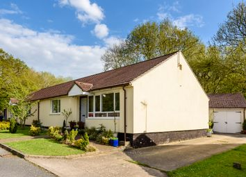 Thumbnail 2 bed bungalow for sale in Goldsmith Way, Stanton, Bury St. Edmunds