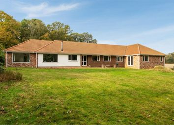 Thumbnail 4 bed detached bungalow for sale in The Street, Nacton, Ipswich, Suffolk